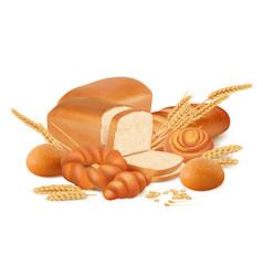 fresh bread pretzels rolls bagels baking from vector image