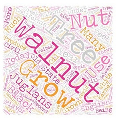 History Of Walnuts text background wordcloud vector