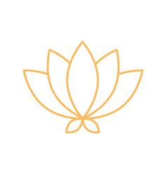 Lotus flower oriental element decoration line vector
