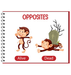Opposite words with alive and dead vector