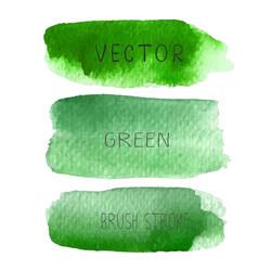 set of green brush strokes watercolor vector image