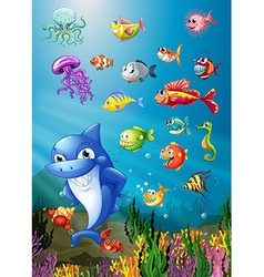 Shark and fish swimming under the sea vector