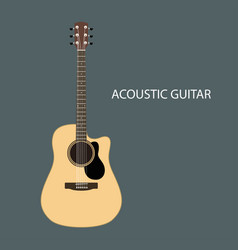 acoustic guitars isolated vector image vector image