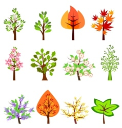 set of different beautiful trees vector image