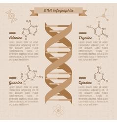 vintage medical infographics vector image vector image