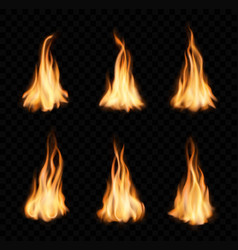 Burning fire flames and trails campfire vector