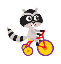 Cute little raccoon character riding bicycle vector