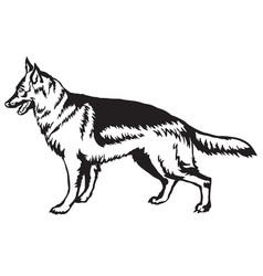 decorative standing portrait of dog german vector image