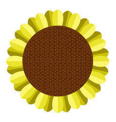 isolated colored sunflower vector image