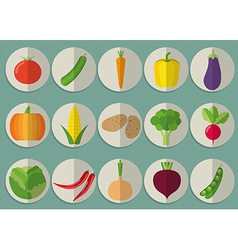Vegetable icon set The image of vegetables symbol vector