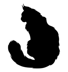 furry cat silhouette vector image