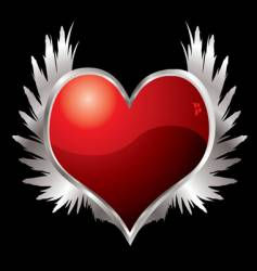 love heart wings vector image