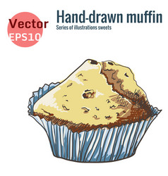 hand-drawn muffin isolated on a white background vector image