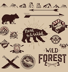 Set of the Camping outdoor labels and design vector image