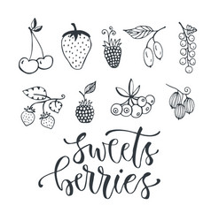 sweet berries hand drawn isolated berry set on vector image