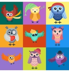Cartoon owl isolated vector