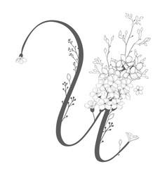 hand drawn floral u monogram and logo vector image