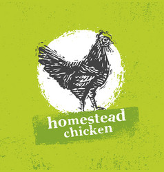 Homestead chicken locally grown organic eco food vector