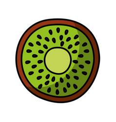 Kiwi fresh fruit drawing icon vector