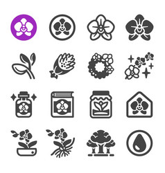 Orchid icon set vector