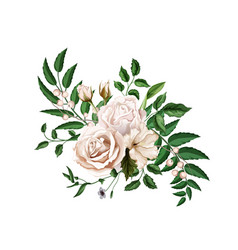 Realistic watercolor rose bouquet leaves vector