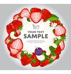 Yogurt Splash on Strawberries Wreath vector