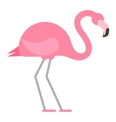 Cool pink decorative flamingo vector image