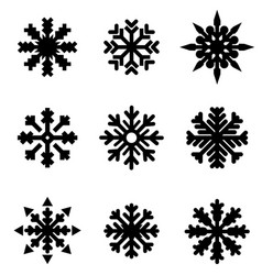set of winter christmas snowflakes vector image vector image
