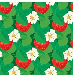 strawberry seamless 5 380 vector image