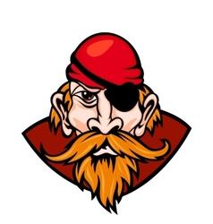 Danger pirate vector image vector image
