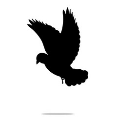 pigeon bird black silhouette anima vector image