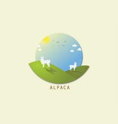 Alpacadraba vector