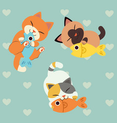 cat love fish play with a fish vector image