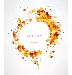 Frame with the beautiful autumn leaves vector