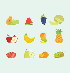 fruit set collection with various shape and vector image