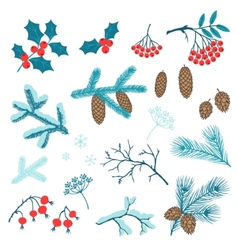 Set of Merry Christmas stylized winter branches vector image