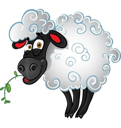 Sheep with blade of grass vector image