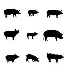 silhouettes pigs happy new year meat shop vector image