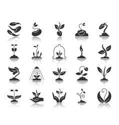 sprout black silhouette icons set vector image
