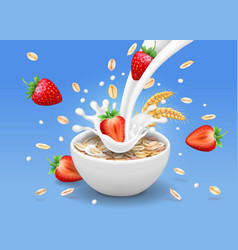 Strawberry and oatmeal flakes in milk pouring vector