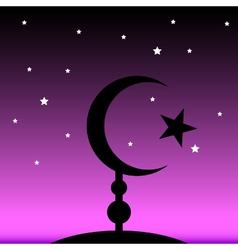 Symbol of islam at night vector