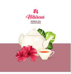 Tea card with hawaiian hibiscus red fragrance vector