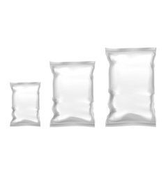 Template Blank Realistic Plastic Pack With Zipper vector image