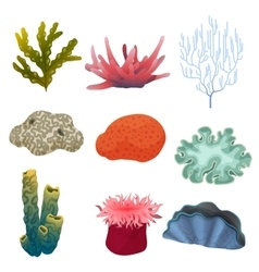 Different kind of cartoon underwater plants and vector image vector image