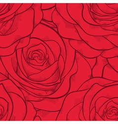 beautiful seamless pattern in red roses with conto vector image