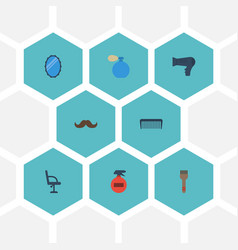flat icons whiskers elbow chair comb and other vector image