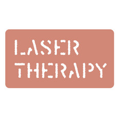 Laser sign on white vector