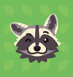 racoon emotional head of cute vector image