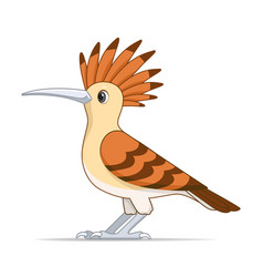 red hoopoe bird on a white background vector image