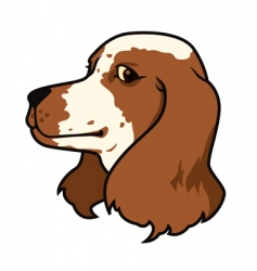 spaniel dog head vector image